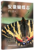 Butterfly Fauna of Anhui