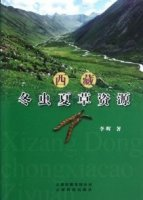 Cordyceps resources in Tibet