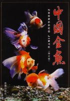 Golden Fish of China