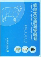 Atlas of Sheep Entity Anatomy (mianyang shiti jiepouxue tupu)