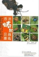 A Photographic Guide to HongKong True Bugs