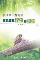 Common Forest Insects and Spiders in the Middle and Lower Reaches of Yangtze River