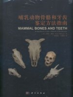 MAMMAL BONES AND TEETHAn Introductory Guide to Methods of Identification