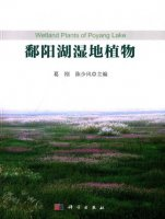 Wetland Plants of Poyang Lake