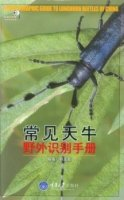 A Photographic Guide to Longhorn Beetles of China