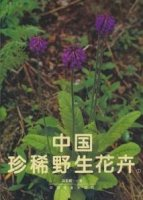 Rare And Precious Wild Flowers of China