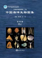 An Illustrated Guide To Species in China's Seas (Vol.4)- Animalia (2) Mollusca