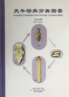 Iconography of Classification of the Larva Stage of Longicorn Beetles