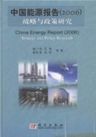 China Energy Report (2006) Strategy and Policy Research