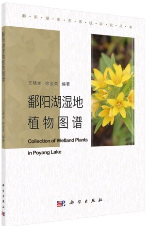 Collection of Wetland Plants in Poyang Lake - Click Image to Close