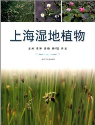 Wetland Plants of Shanghai - Click Image to Close