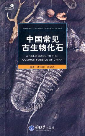 A Field Guide to Common Fossils of China - Click Image to Close