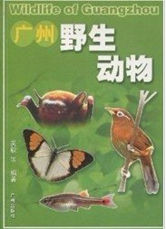 Wildlife of Guangzhou - Click Image to Close