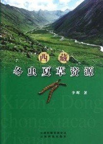 Cordyceps resources in Tibet - Click Image to Close